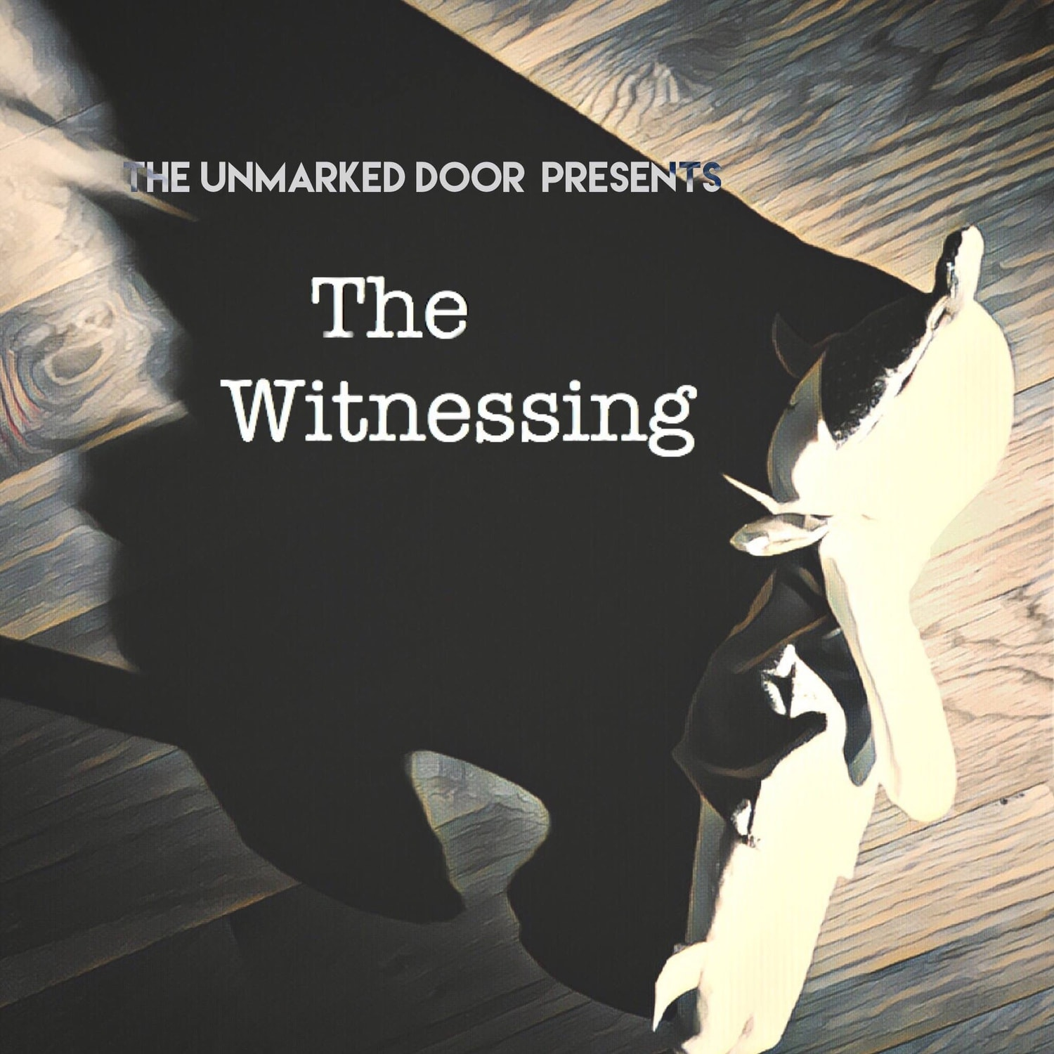 the witnessing, hollywood fringe, fringe fest, hollywoof fringe festival, sterling powers, unmarked door, rolfe kent, horror, horror theatre, immersive theatre